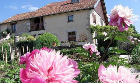 Extérieur, Jardin de la maison d'hôtes à Chevigney-lès-Vercel